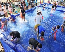 어촌체험마을 축제지원